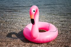 Pink Flamingo. The inflatable circle. Summer. Sea stock photo