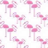 Pink flamingo isolated on background. Exotic bird. Cool flamingo decorative flat design element. Wildlife zoo cute Royalty Free Stock Photography