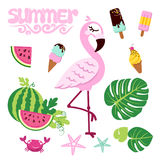 Pink flamingo isolated on white background with ice creams and watermelons. stock illustration