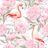 Pink flamingo, peony flowers, hand written text. Seamless pattern. Watercolor. Pink flamingo birds with peony flowers and hand written text. Vintage floral stock image