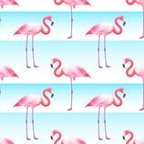 Pink Flamingo Seamless Horizontal Stripes Pattern royalty free illustration