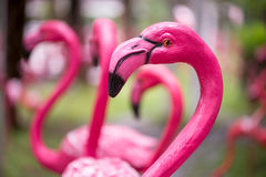 Pink flamingo statues in a home garden. Stock Images