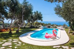 Pink flamingo waterbed in swimming pool stock images