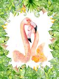 Pink flamingo watercolor hand drawn illustration in arrangement with green tropical plants, exotic monstera and banana leafs. Jungle tree Perfect for greeting Royalty Free Stock Photography