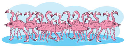 Pink flamingos cartoon illustration