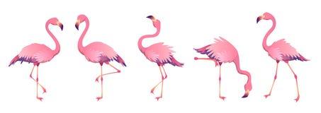 Free Pink Flamingos. Cute Flamingo Animal Exotic Nature Wild Fauna Zoo Bird Beak Plumage Legs Tropical African Beach Art Royalty Free Stock Photos - 139548038