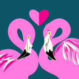 Pink flamingos in love Stock Photos