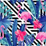 Pink flamingos and orchid. Watercolor tropic pink flamingos and orchid with of trendy blue floral plant jungle palm banana leaf Wallpapers paradise beach summer stock illustration