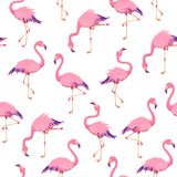 Pink flamingos pattern. Cute tropical birds, seamless flamingo hawaii texture bird repeat print decor wallpaper. Vector background royalty free illustration