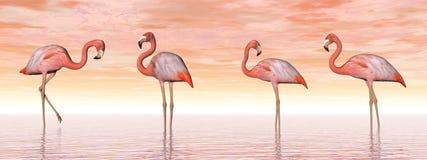 Pink flamingos in water - 3D render Royalty Free Stock Photo