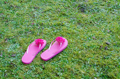 Pink flip flops Stock Photos