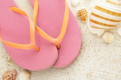 Pink flipflops with seashells on white wooden board. Close up portrait of pink flipflops with seashells on white wooden board Royalty Free Stock Photos