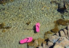 Pink flips flops floating in the sea water.  Stock Image