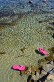 Pink flips flops floating in the sea water.  Stock Photo