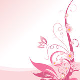 Pink floral Royalty Free Stock Image