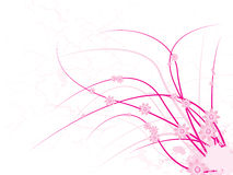 Pink floral Royalty Free Stock Photography