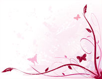 Pink Floral Stock Image