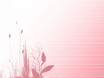 Pink Floral abstract Stock Photos