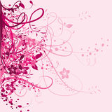 Pink floral background Stock Images
