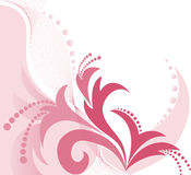 Pink floral background Stock Photos