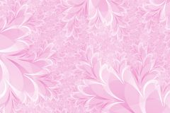 Pink Floral Background Royalty Free Stock Image