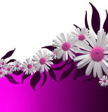 Pink Floral Background Stock Photo