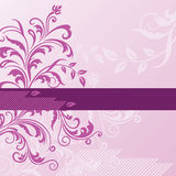 Pink floral background with banner Stock Image