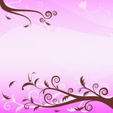 Pink floral  background (vector) Royalty Free Stock Photography