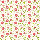 Pink floral background. Stock Image