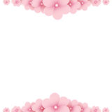 Pink floral background Royalty Free Stock Photos