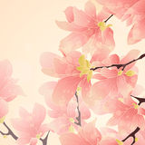 Pink floral border. Pink botanical border with flowers for wedding invitation or cards Royalty Free Illustration