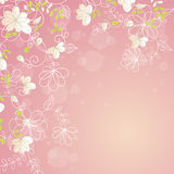 Pink floral border. Pink botanical border with flowers for wedding invitation or cards Stock Images