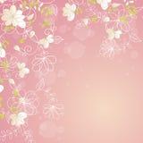 Pink floral border. Pink botanical border with flowers for wedding invitation or cards Stock Illustration
