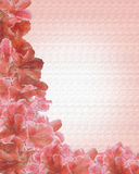Pink Floral Border on canvas Stock Photography