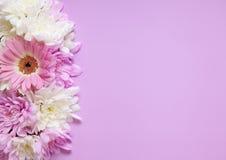 Pink floral border Stock Photos