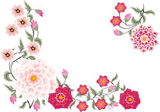 Pink floral corner on white Royalty Free Stock Image