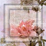 Pink floral design, vintage pastel background Stock Photo