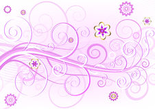 Pink floral elegant card (vector) Stock Photography