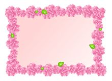 Pink floral frame Royalty Free Stock Photography