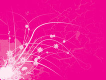 Pink floral girlie Royalty Free Stock Photo