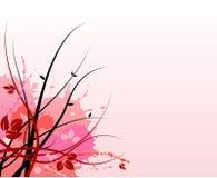Pink floral grunge background Stock Image