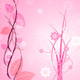 Pink Floral Indicates Bloom Backgrounds And Flower Stock Photos