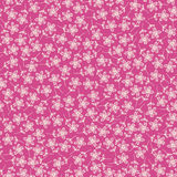 Pink floral pattern Royalty Free Stock Photography