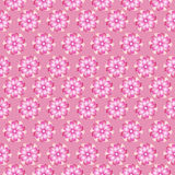 Pink floral seamless background Stock Images