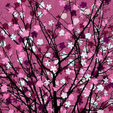 Pink floral tree print. Spring theme blossom tree background for print Stock Photo
