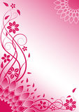 Pink floral vector background Stock Photos
