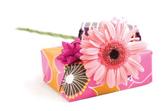 Pink flower. Boxes of gifts and pink flower royalty free stock photos