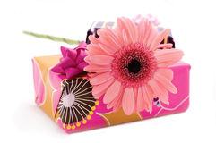 Pink flower. Boxes of gifts and pink flower stock image
