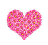 Pink flower. In form of heart Stock Photo
