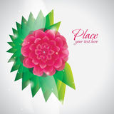 Pink flower abstract background Stock Photos